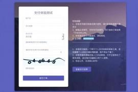 支付源码-轻量级个人免签支付微信支付宝收款支付手动审核邮件短信推送