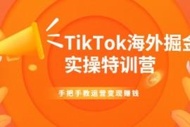 TikTok海外掘金实操特训营:手把手教运营变现赚钱